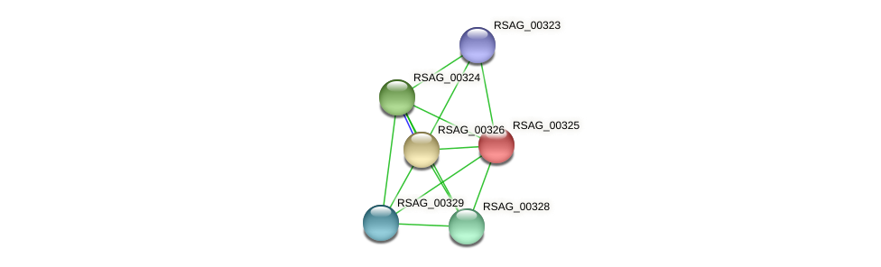 RSAG_00325 protein (Ruminococcus sp. 5139BFAA) - STRING interaction network