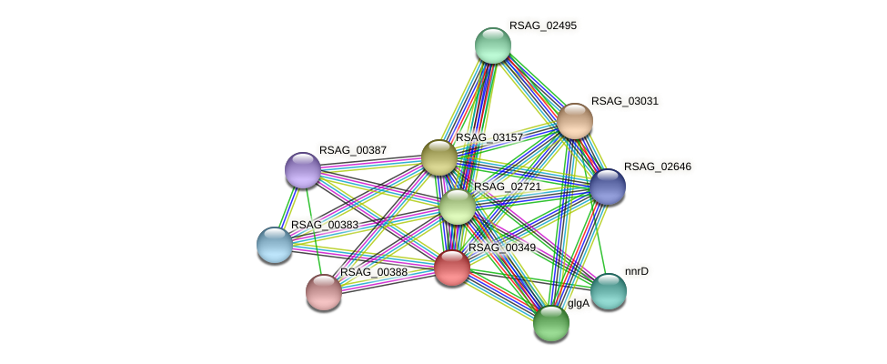 RSAG_00349 protein (Ruminococcus sp. 5139BFAA) - STRING interaction network