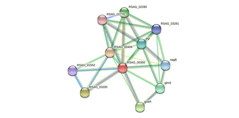 RSAG_00350 protein (Ruminococcus sp. 5139BFAA) - STRING interaction network