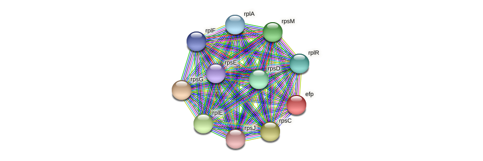 RSAG_00374 protein (Ruminococcus sp. 5139BFAA) - STRING interaction network