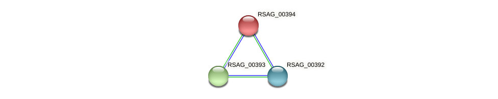 RSAG_00394 protein (Ruminococcus sp. 5139BFAA) - STRING interaction network