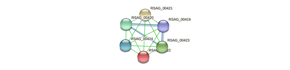 RSAG_00422 protein (Ruminococcus sp. 5139BFAA) - STRING interaction network