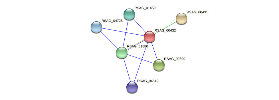 RSAG_00432 protein (Ruminococcus sp. 5139BFAA) - STRING interaction network
