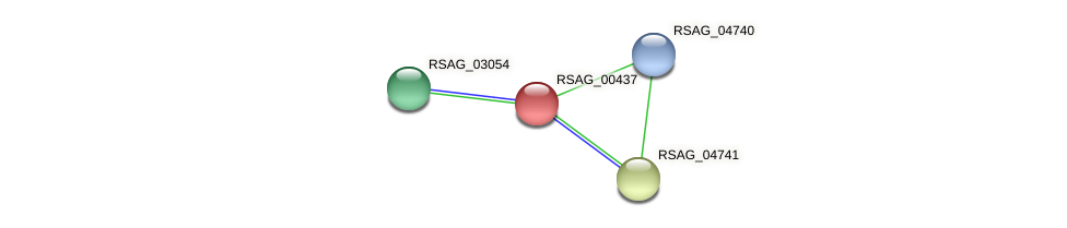 RSAG_00437 protein (Ruminococcus sp. 5139BFAA) - STRING interaction network