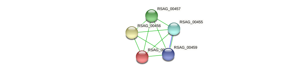 RSAG_00458 protein (Ruminococcus sp. 5139BFAA) - STRING interaction network