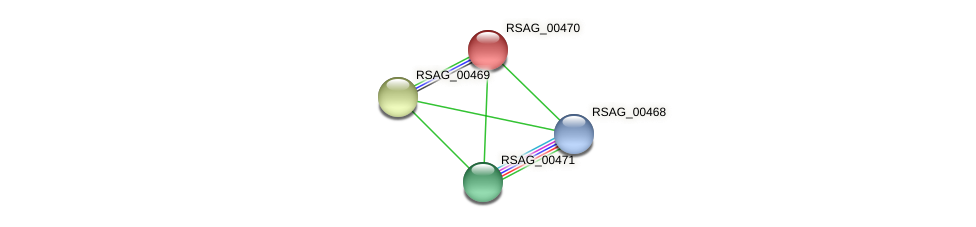 RSAG_00470 protein (Ruminococcus sp. 5139BFAA) - STRING interaction network