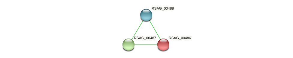 RSAG_00486 protein (Ruminococcus sp. 5139BFAA) - STRING interaction network