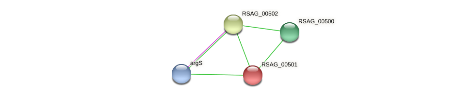 RSAG_00501 protein (Ruminococcus sp. 5139BFAA) - STRING interaction network