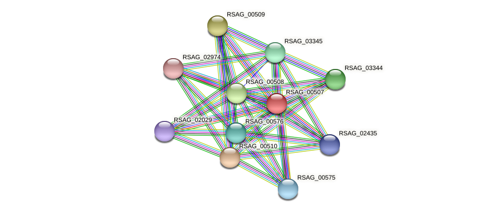 RSAG_00507 protein (Ruminococcus sp. 5139BFAA) - STRING interaction network