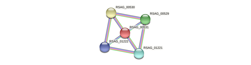 RSAG_00531 protein (Ruminococcus sp. 5139BFAA) - STRING interaction network