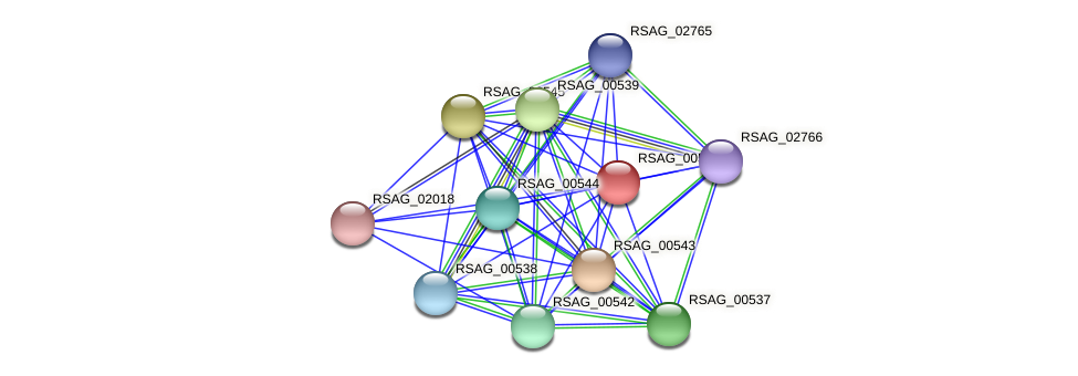 RSAG_00548 protein (Ruminococcus sp. 5139BFAA) - STRING interaction network