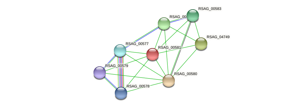 RSAG_00581 protein (Ruminococcus sp. 5139BFAA) - STRING interaction network