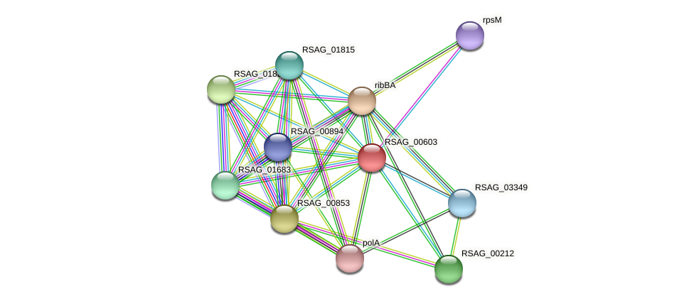 RSAG_00603 protein (Ruminococcus sp. 5139BFAA) - STRING interaction network