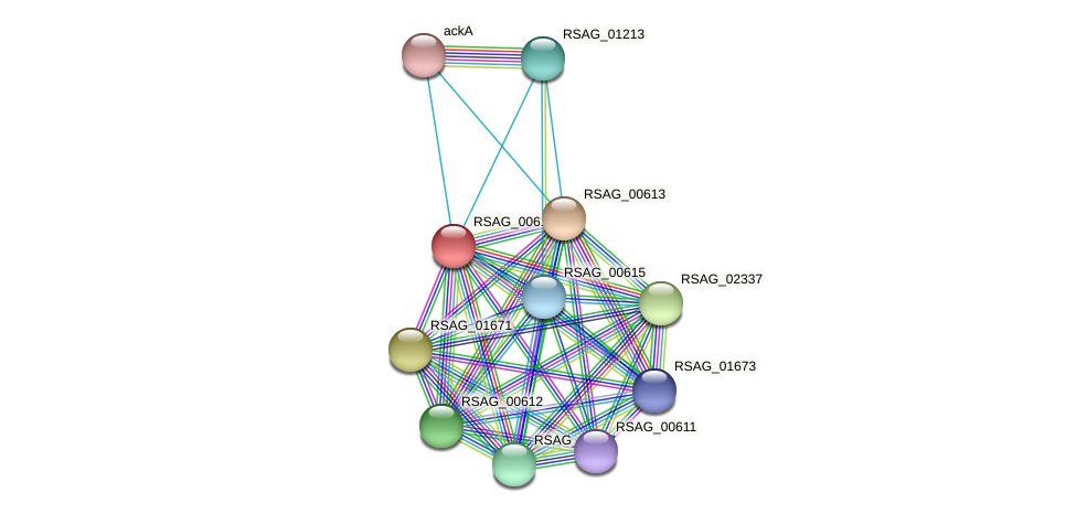 RSAG_00614 protein (Ruminococcus sp. 5139BFAA) - STRING interaction network