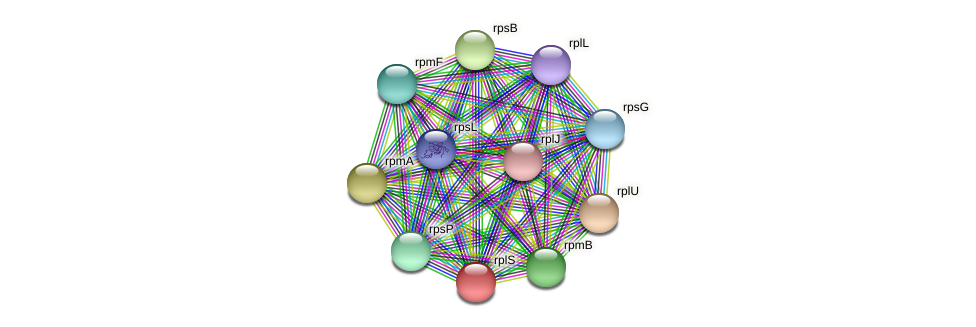 rplS protein (Ruminococcus sp. 5139BFAA) - STRING interaction network