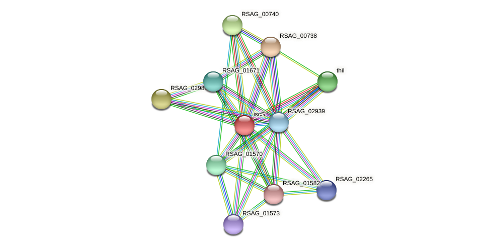 iscS protein (Ruminococcus sp. 5139BFAA) - STRING interaction network