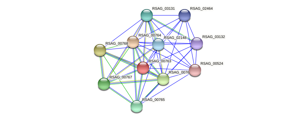 RSAG_00763 protein (Ruminococcus sp. 5139BFAA) - STRING interaction network