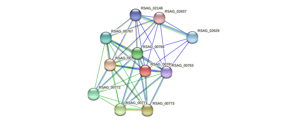 RSAG_00769 protein (Ruminococcus sp. 5139BFAA) - STRING interaction network