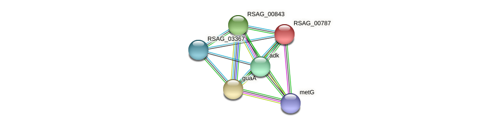 RSAG_00787 protein (Ruminococcus sp. 5139BFAA) - STRING interaction network