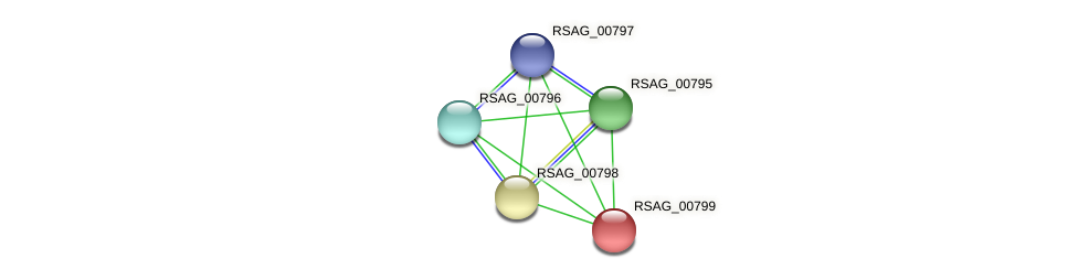 RSAG_00799 protein (Ruminococcus sp. 5139BFAA) - STRING interaction network