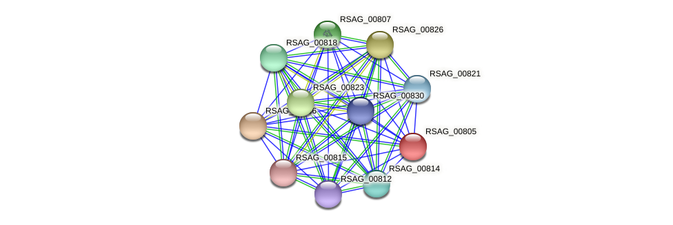 RSAG_00805 protein (Ruminococcus sp. 5139BFAA) - STRING interaction network
