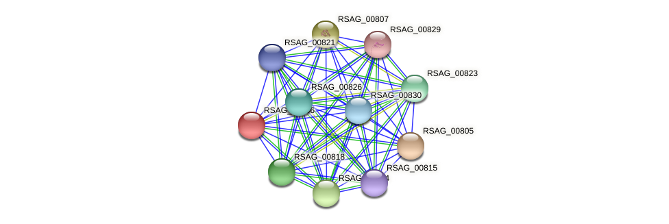 RSAG_00806 protein (Ruminococcus sp. 5139BFAA) - STRING interaction network