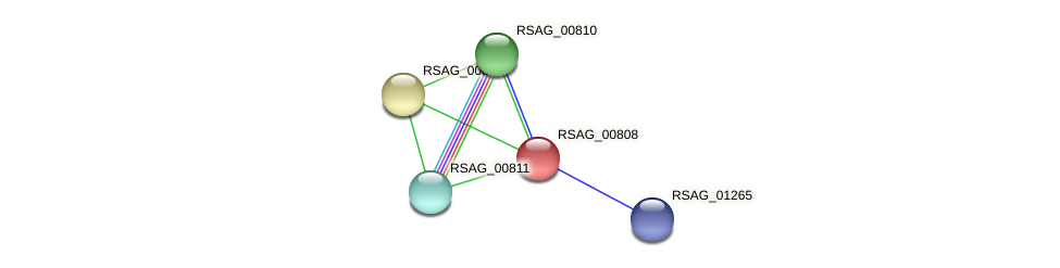 RSAG_00808 protein (Ruminococcus sp. 5139BFAA) - STRING interaction network