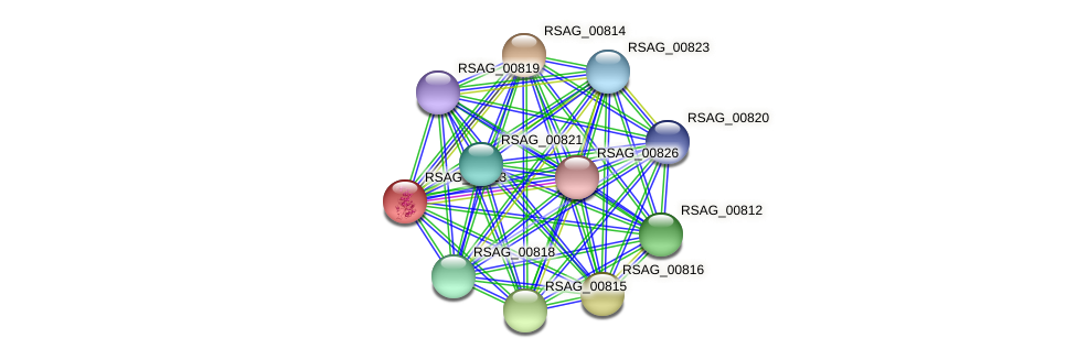 RSAG_00813 protein (Ruminococcus sp. 5139BFAA) - STRING interaction network