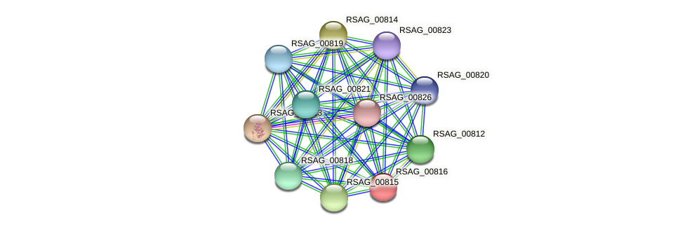 RSAG_00816 protein (Ruminococcus sp. 5139BFAA) - STRING interaction network