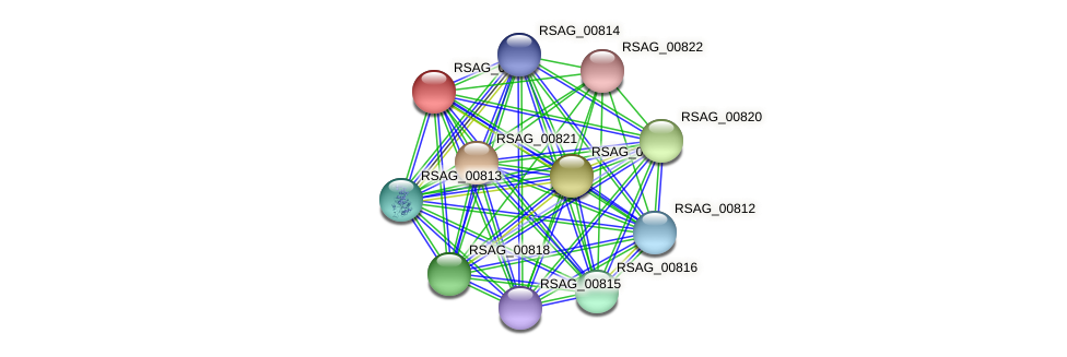 RSAG_00819 protein (Ruminococcus sp. 5139BFAA) - STRING interaction network
