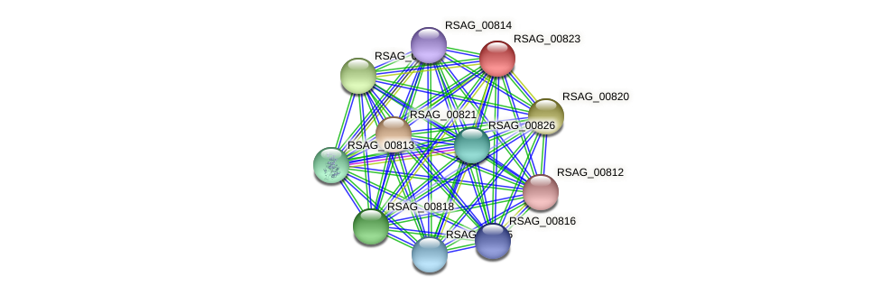 RSAG_00823 protein (Ruminococcus sp. 5139BFAA) - STRING interaction network