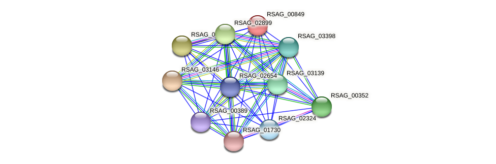 RSAG_00849 protein (Ruminococcus sp. 5139BFAA) - STRING interaction network