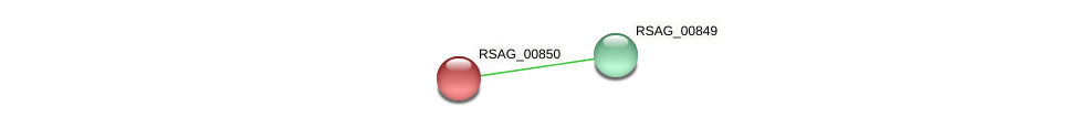 RSAG_00850 protein (Ruminococcus sp. 5139BFAA) - STRING interaction network