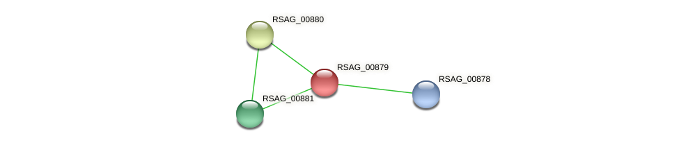 RSAG_00879 protein (Ruminococcus sp. 5139BFAA) - STRING interaction network