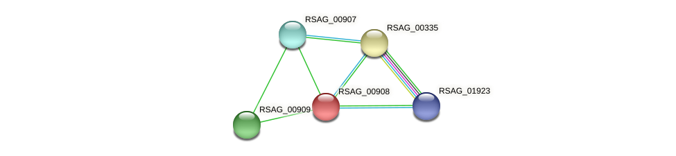 RSAG_00908 protein (Ruminococcus sp. 5139BFAA) - STRING interaction network
