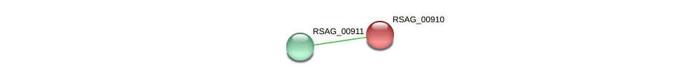 RSAG_00910 protein (Ruminococcus sp. 5139BFAA) - STRING interaction network