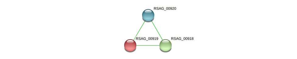 RSAG_00919 protein (Ruminococcus sp. 5139BFAA) - STRING interaction network