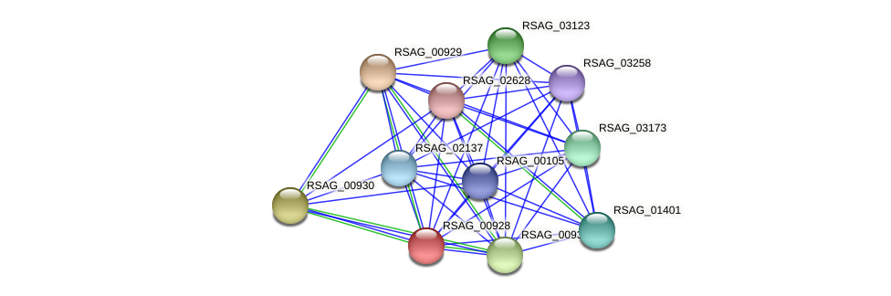 RSAG_00928 protein (Ruminococcus sp. 5139BFAA) - STRING interaction network