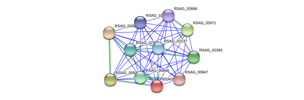 RSAG_00929 protein (Ruminococcus sp. 5139BFAA) - STRING interaction network