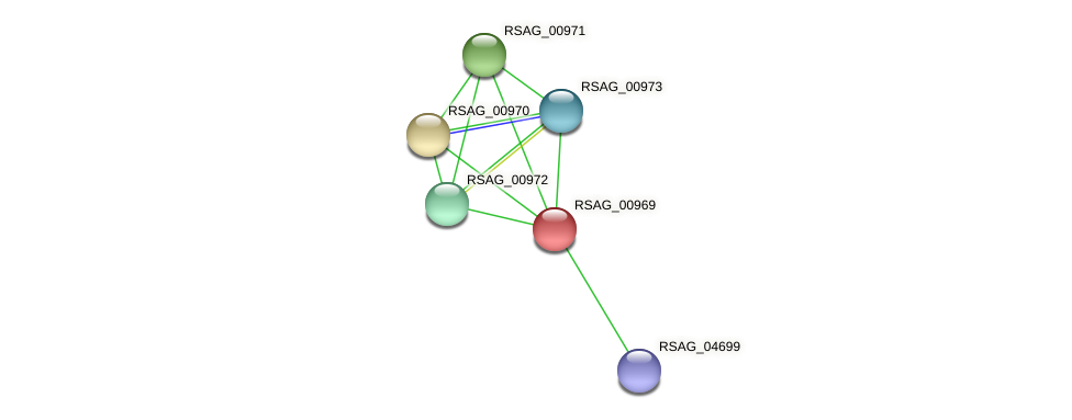 RSAG_00969 protein (Ruminococcus sp. 5139BFAA) - STRING interaction network