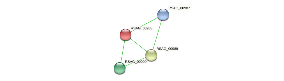 RSAG_00988 protein (Ruminococcus sp. 5139BFAA) - STRING interaction network