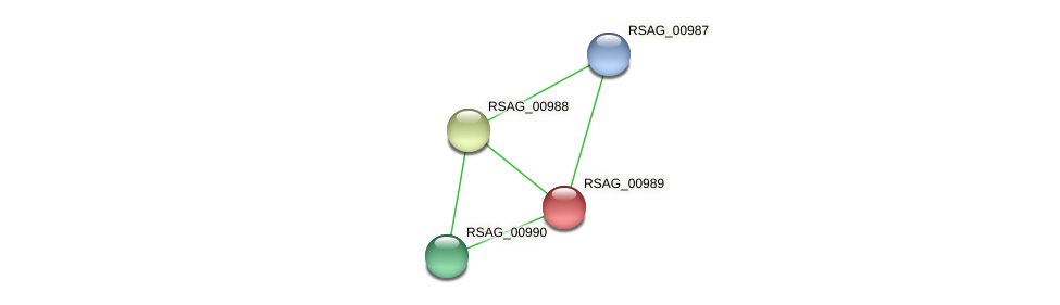 RSAG_00989 protein (Ruminococcus sp. 5139BFAA) - STRING interaction network