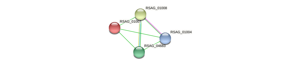 RSAG_01007 protein (Ruminococcus sp. 5139BFAA) - STRING interaction network