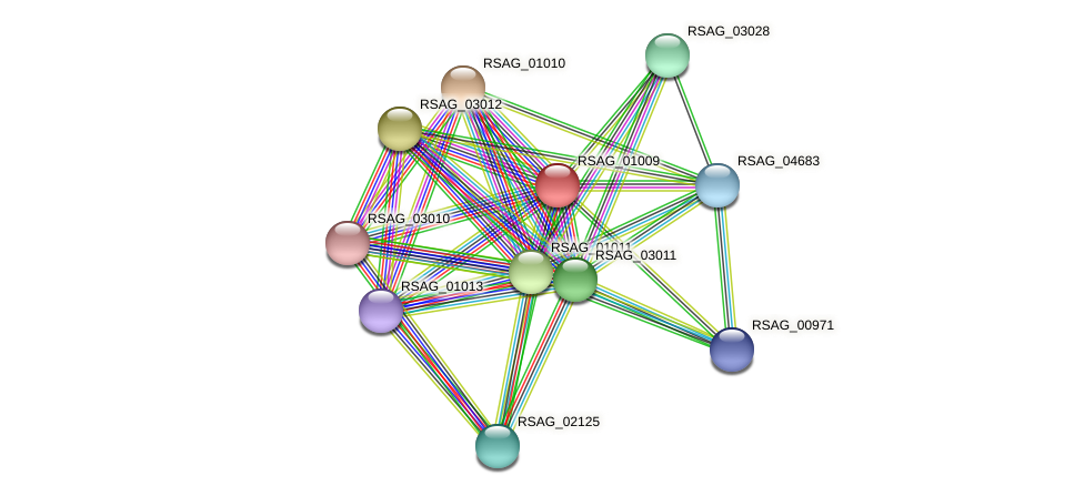 RSAG_01009 protein (Ruminococcus sp. 5139BFAA) - STRING interaction network