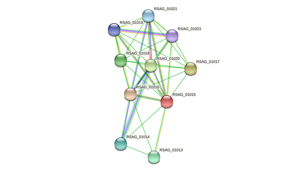RSAG_01015 protein (Ruminococcus sp. 5139BFAA) - STRING interaction network