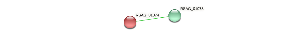 RSAG_01074 protein (Ruminococcus sp. 5139BFAA) - STRING interaction network