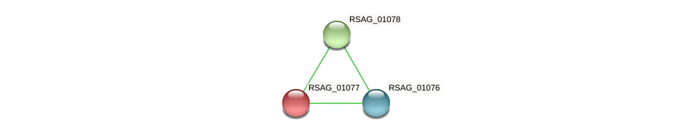 RSAG_01077 protein (Ruminococcus sp. 5139BFAA) - STRING interaction network