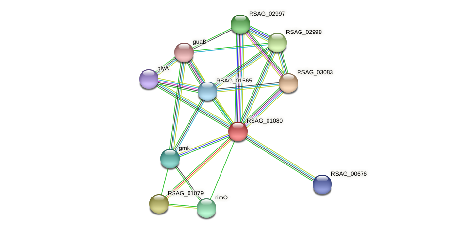 RSAG_01080 protein (Ruminococcus sp. 5139BFAA) - STRING interaction network