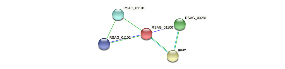 RSAG_01100 protein (Ruminococcus sp. 5139BFAA) - STRING interaction network