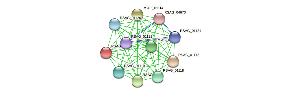 RSAG_01113 protein (Ruminococcus sp. 5139BFAA) - STRING interaction network